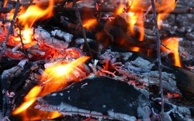5 Steps to Effective Burning